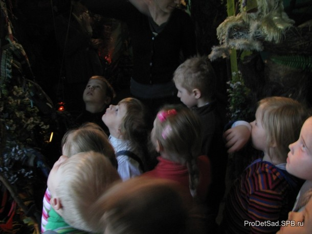 музей кукол дети