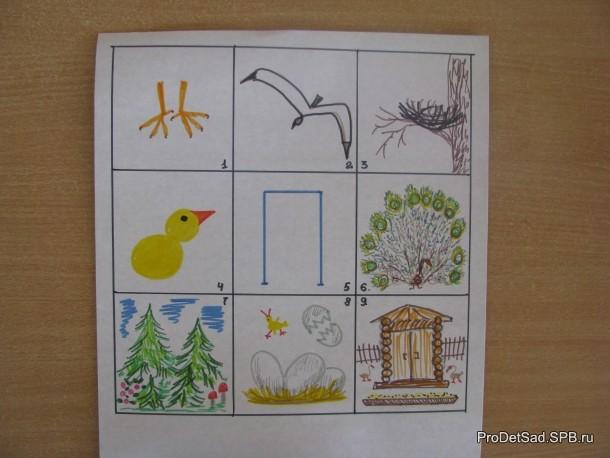 мнемотаблица про птиц