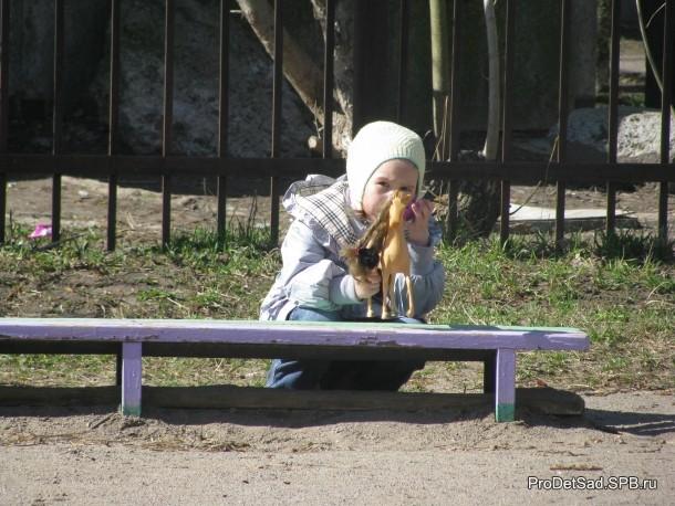 Девочка с лошадкой
