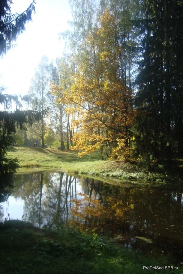 Павловск пейзаж