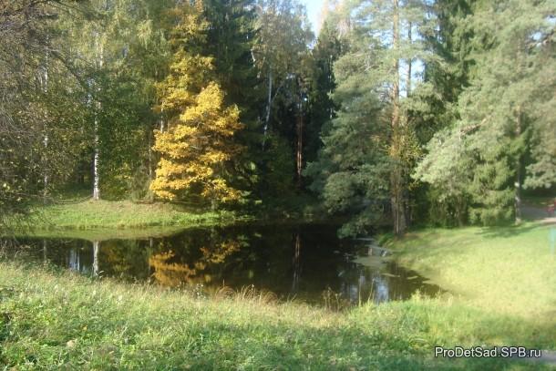 озеро и деревья