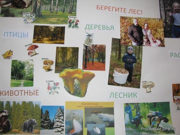 газета про лес