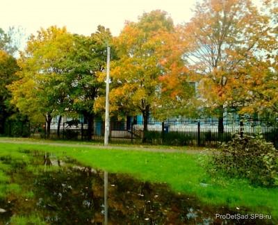 Стихотворение - Осень в луже отражается