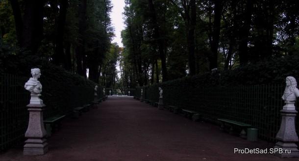 Летний сад - аллея с бюстами