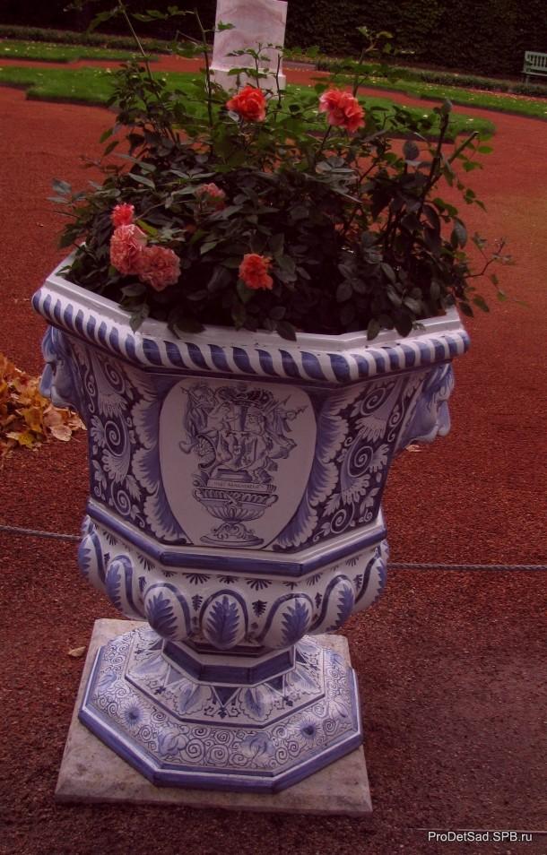 Ваза с розами в Летнем саду