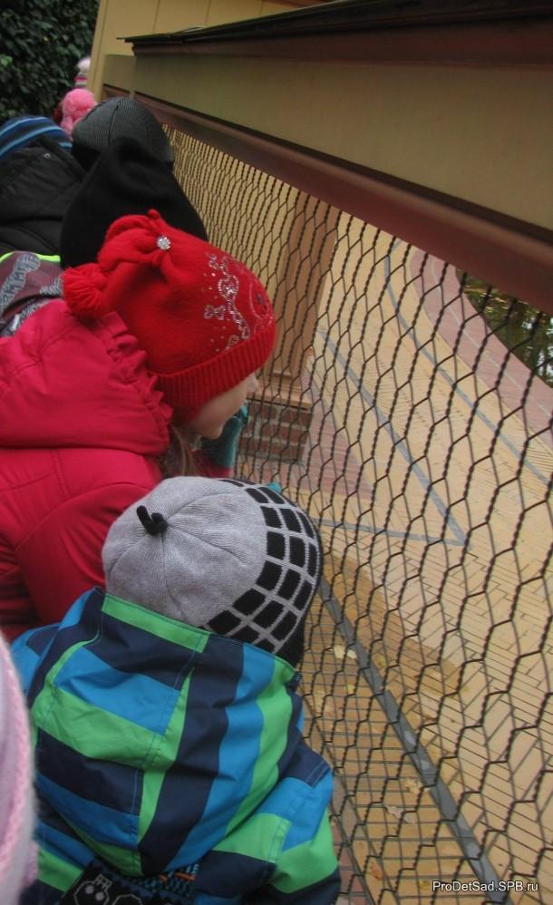 дети и ограда