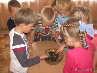 Вода - поисково - исследовательский проект с дошкольниками