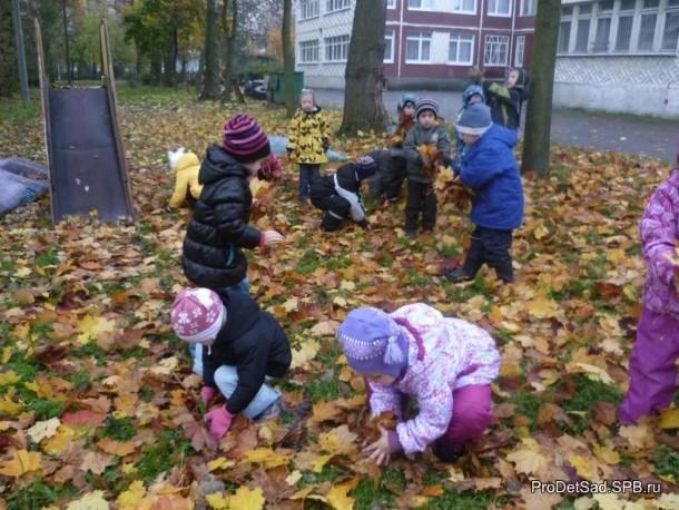 дети собирают осенние листья