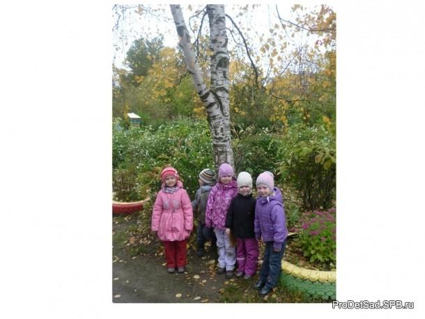 дети у дерева